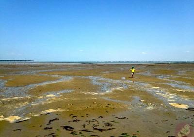 Jeux à marée basse