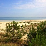 Diversité des plages