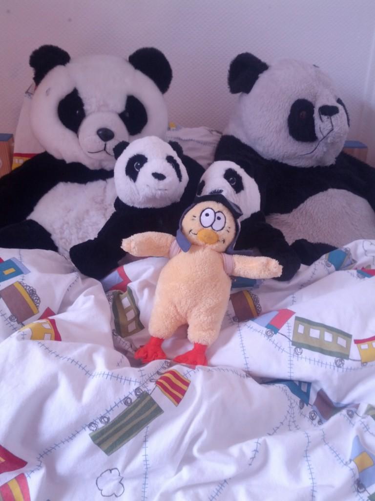 Poussin et Panda Family