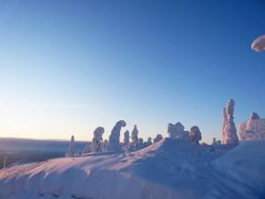 Laponie_Paysage_Neige