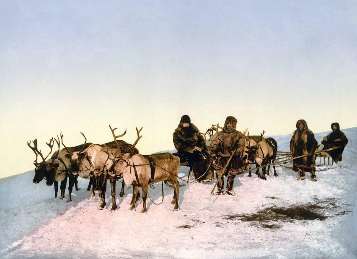 Samis et traineaux de rennes