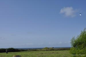 Cerf-volant sur la côte atlantique