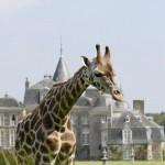 Chateau-et-Parc-Zoologique-de-la-Bourbansais_photo1