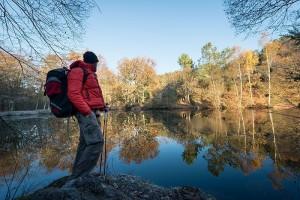 Voyage en famille en Bretagne : Brocéliande