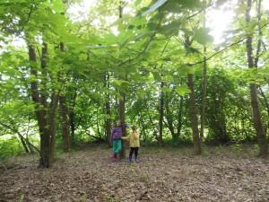 Mini-trip dans les Ardennes Belges avec 2 enfants