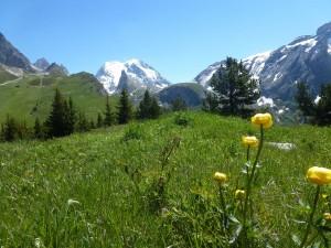 Parc de la Vanoise – Alpes – 2 enfants et des marmottes…