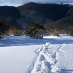 neige_ski