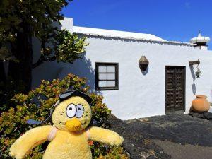 iles-canaries-destination-famille-kidfriendly-voyage